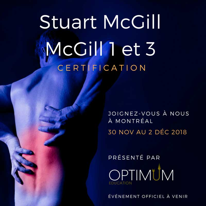 stuart mcgill back mechanic pdf